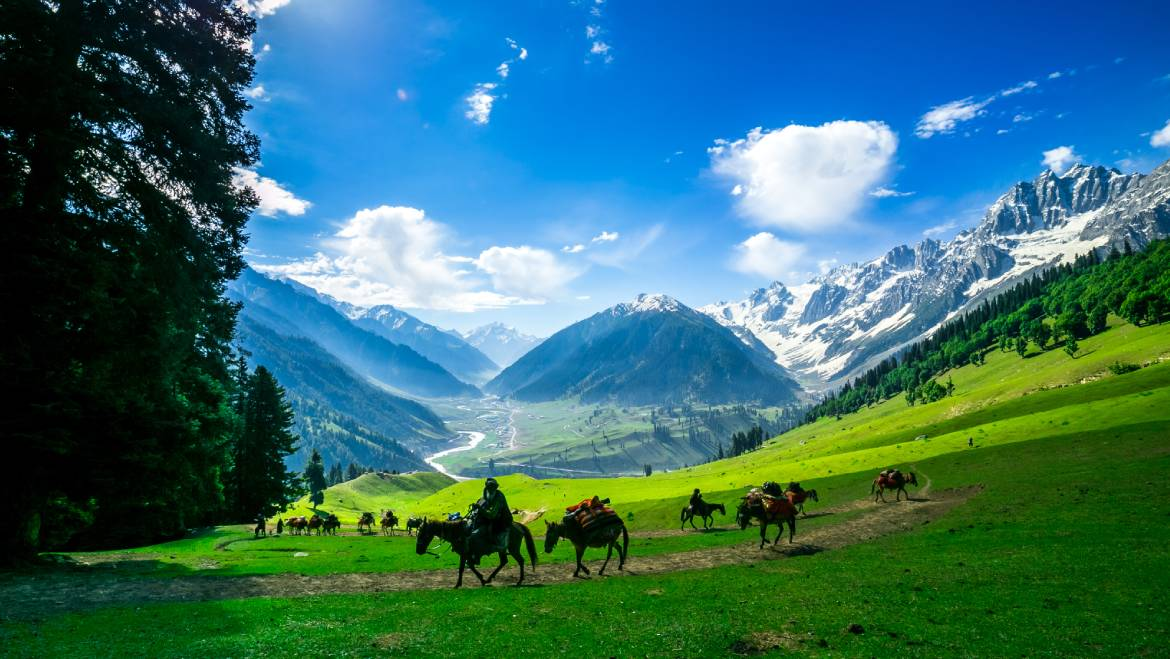 Magical moments in Kashmir