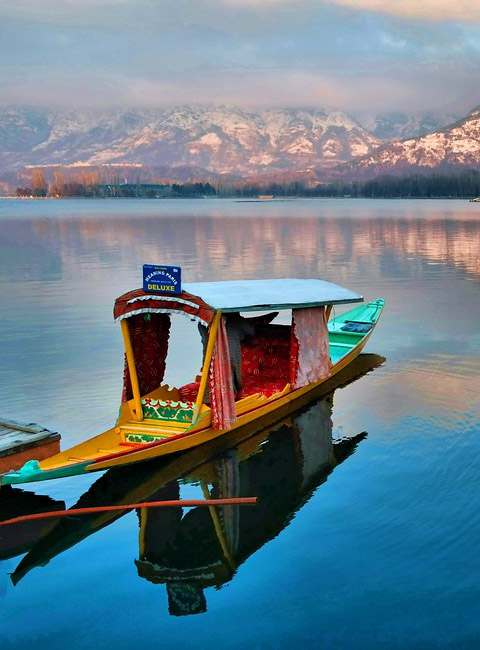 Sizzling - Filled Kashmir Tour