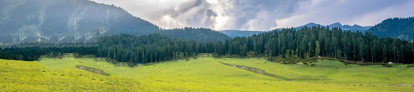 Kashmir LTC Tour Package