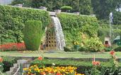 Arrive To Srinagar– Mughal Gardens - 80Km