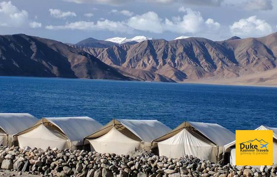 Standard Camp In Pangong